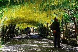Сад Боднант в Уэльсе