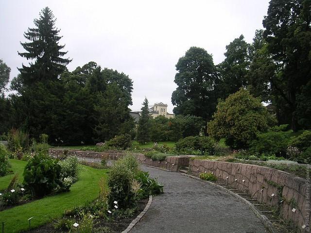botanicheskiy-sad-oslo-11
