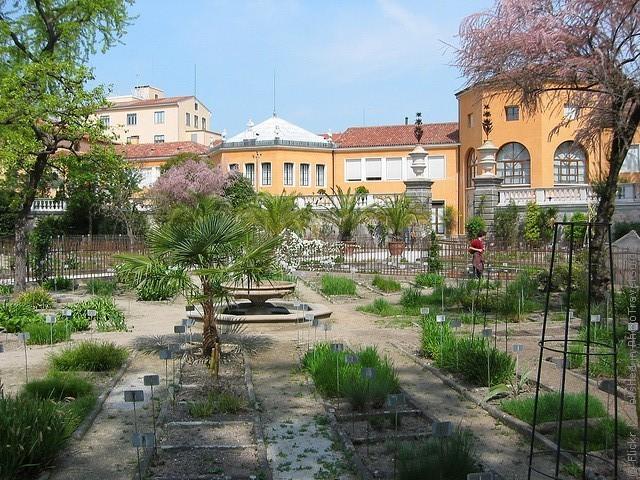 Ботанический сад в Падуе 01