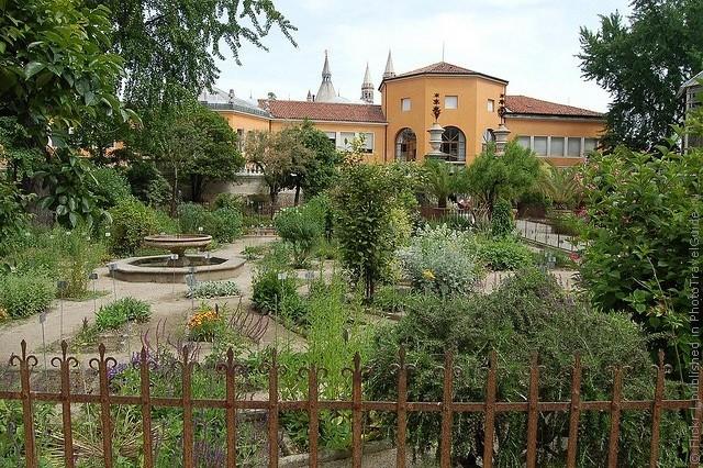 Ботанический сад в Падуе 07