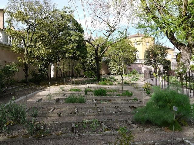 Ботанический сад в Падуе 14