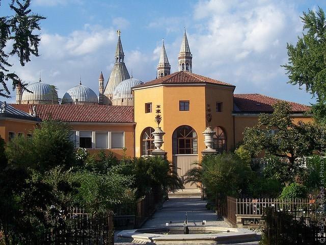 Ботанический сад в Падуе 17
