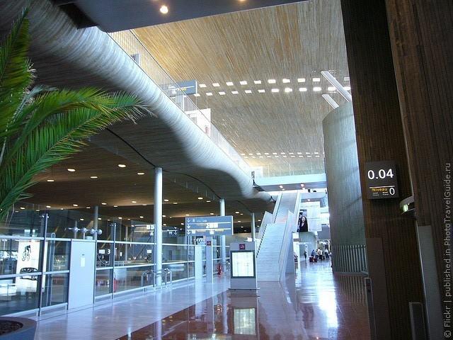 aeroport-imeni-sharlya-de-gollya-09