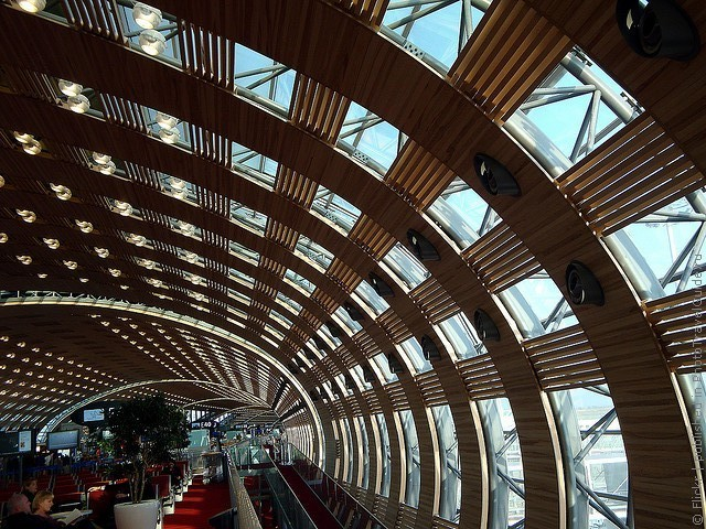 aeroport-imeni-sharlya-de-gollya-11
