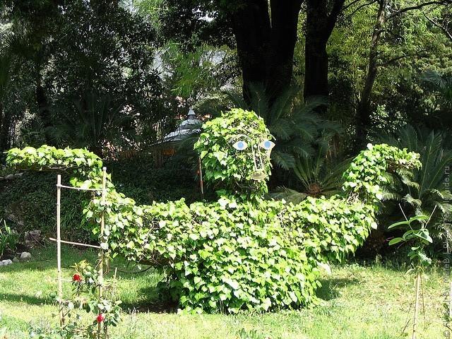 botanicheskiy-sad-andre-hellera-17