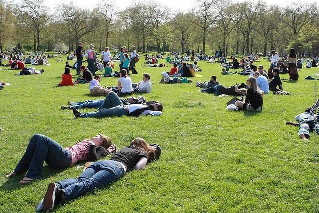 grin-park-london-12