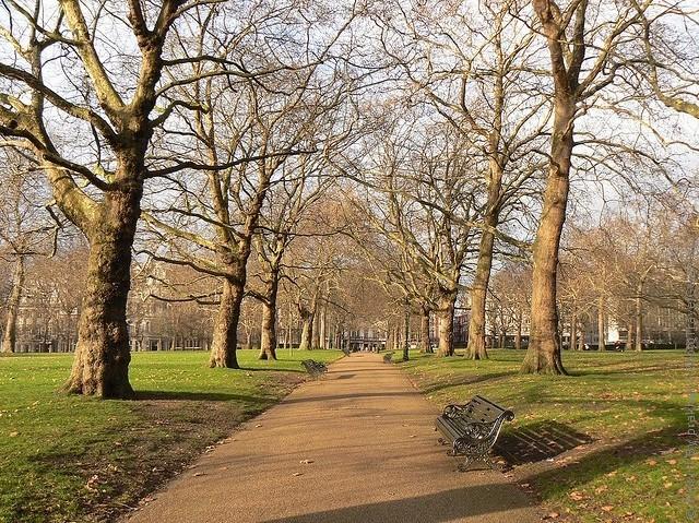 grin-park-london-17