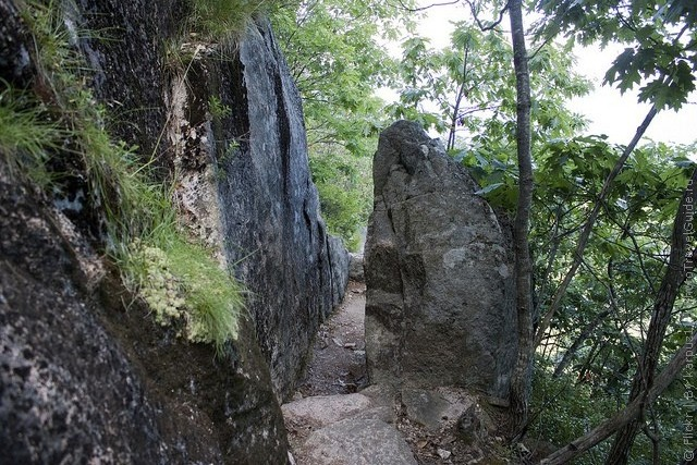 precipice-trail-acadia-02