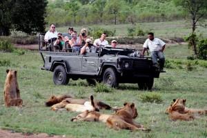 Лучшие места для сафари в Африке