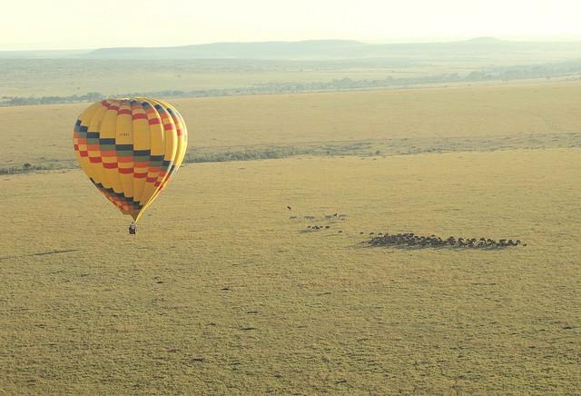 top10-safari-zapovednik-masai-mara-1