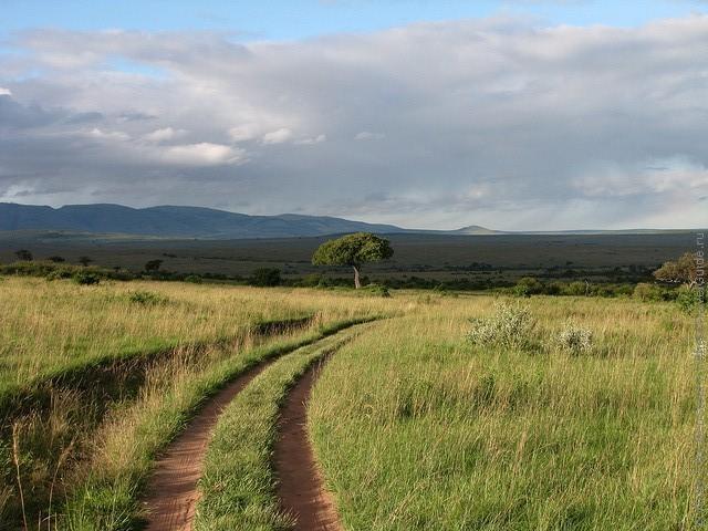 zapovednik-masai-mara-13