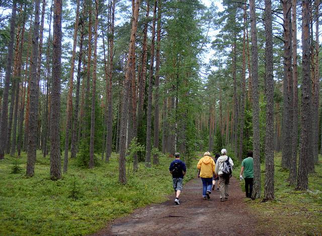 natsionalnyi-park-lahemaa-08