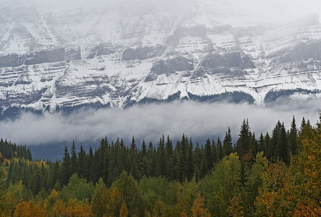 icefields-parkway-04