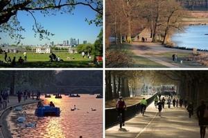 Королевские парки Лондона