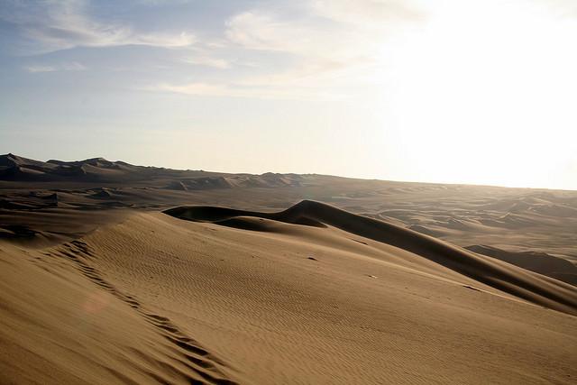 pustynja-naska-2
