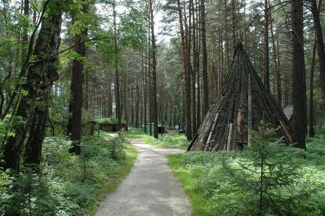 tomskaya-pisanica-08