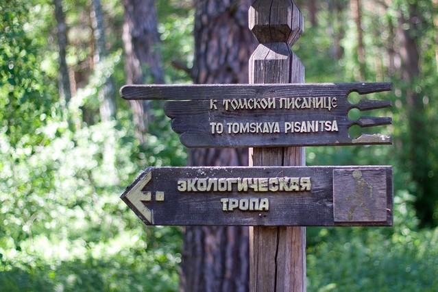 tomskaya-pisanica-11