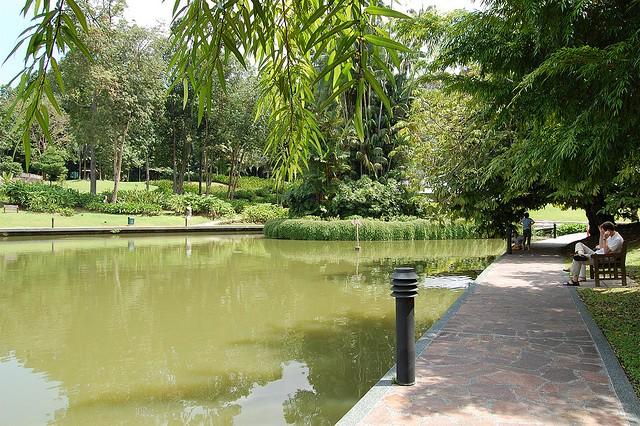 singapurskij-botanicheskij-sad-04