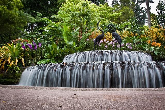 singapurskij-botanicheskij-sad-19