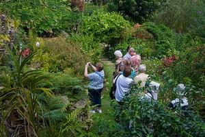 Сад Андромеда на острове Барбадос