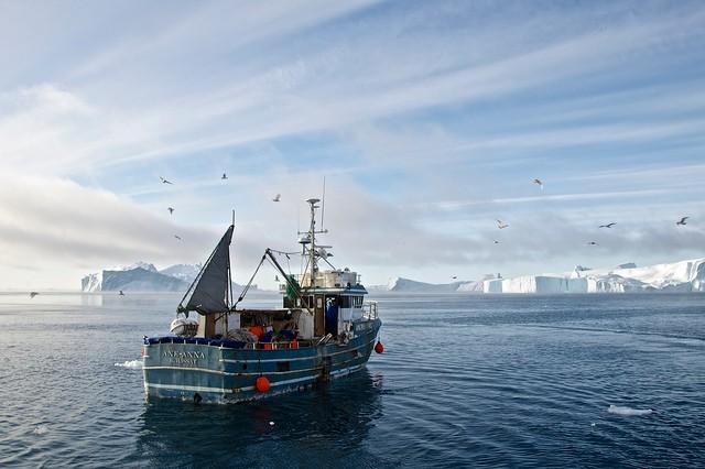 fiord-ilulissat-15