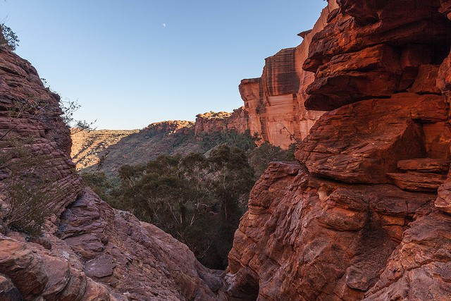 kings-canyon-07