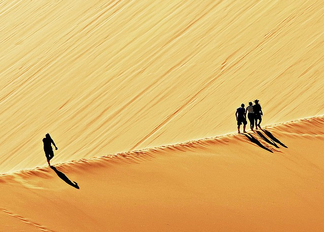pustynya-namib-06