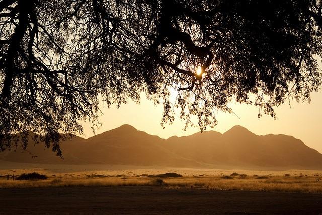 pustynya-namib-07