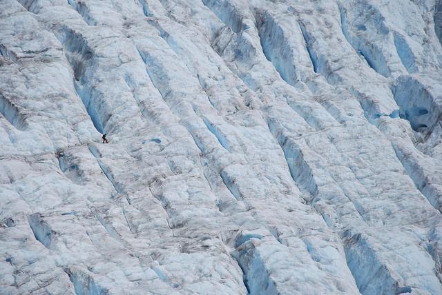 lednik-foksa-10