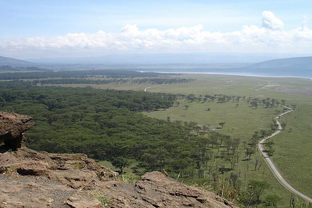 nacionalnyj-park-ozero-nakuru-15