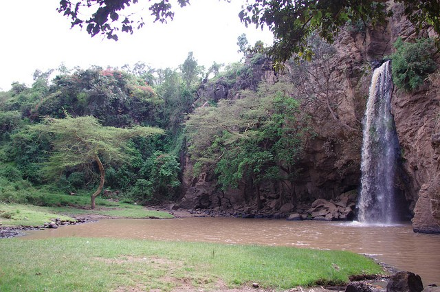 nacionalnyj-park-ozero-nakuru-16