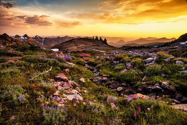 mount-rainier-national-park-01