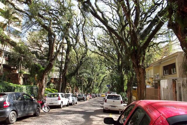 ulitsa-rua-gonsalu-de-karvalo-06