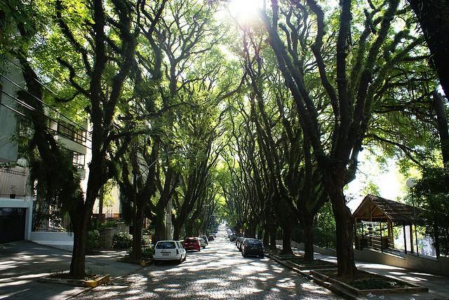 ulitsa-rua-gonsalu-de-karvalo-07