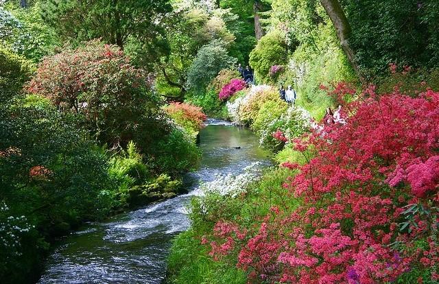 Bodnant gardens fishing
