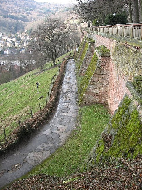 Гейдельбергский замок 14