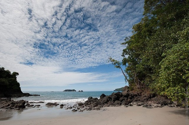 Manuel-Antonio-National-Park-19