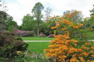 Сад Берггартен в Ганновере