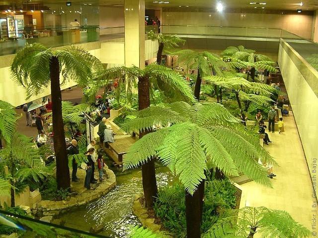 Аэропорт Чанги занимает площадь в 13 квадратных километров, его инфраструктура устроена таким образом...