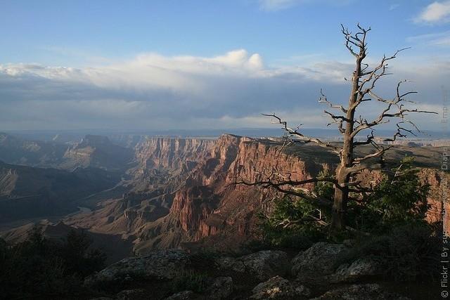 grand-canyon-07