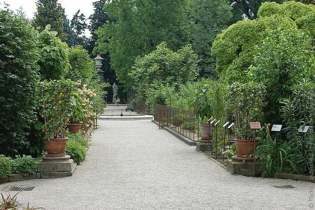 Ботанический сад в Падуе 05