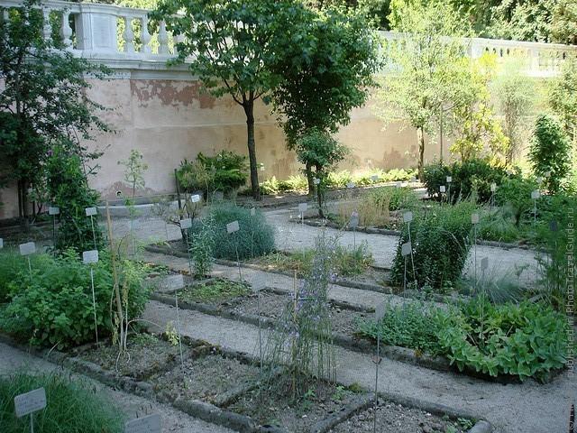 Ботанический сад в Падуе 06