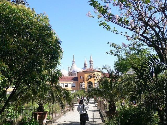Ботанический сад в Падуе 09