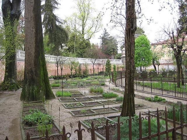 Ботанический сад в Падуе 12