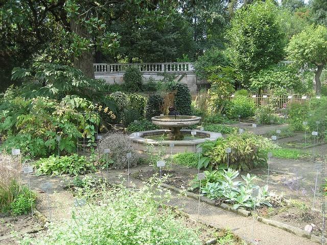 Ботанический сад в Падуе 16