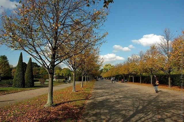 Риджентс-парк 14