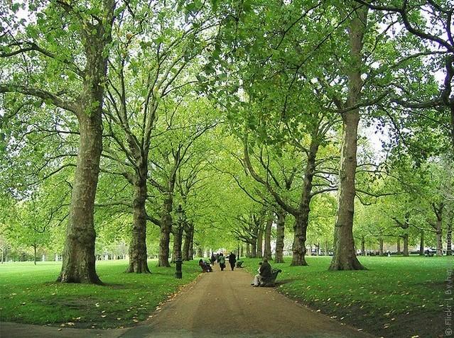 grin-park-london-04