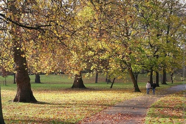 grin-park-london-08