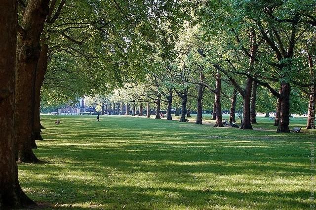 grin-park-london-11