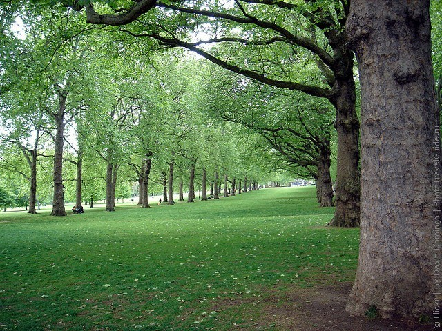 grin-park-london-16